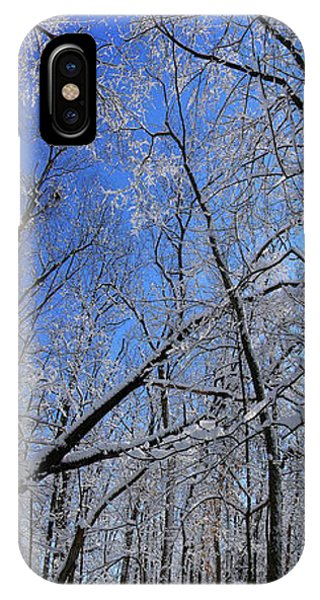 Glowing Forest, Knoch Knolls Park, Naperville Il IPhone Case