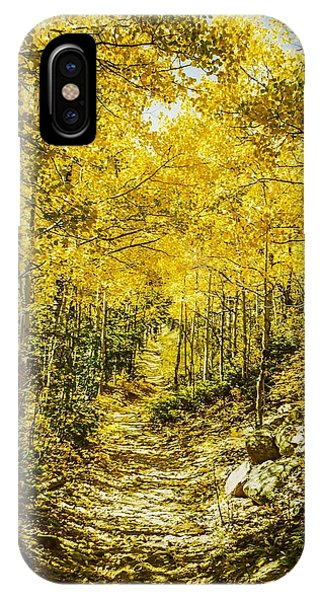 Golden Aspens In Colorado Mountains IPhone Case