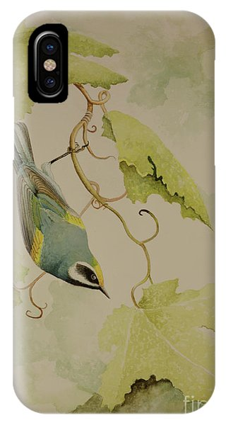 Golden-winged Warbler IPhone Case