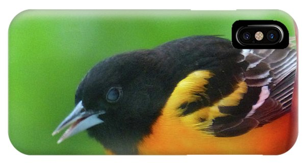 Good Morning Mr. Oriole IPhone Case