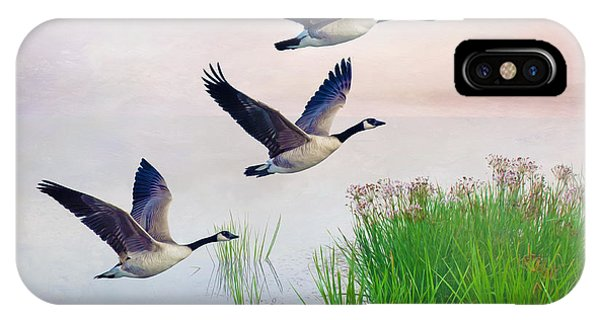 Canada Goose iPhone Case - Graceful Geese by Laura D Young