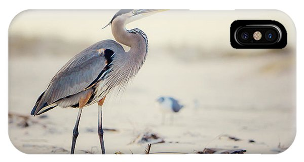 Beach iPhone Case - Great Blue Heron  by Joan McCool