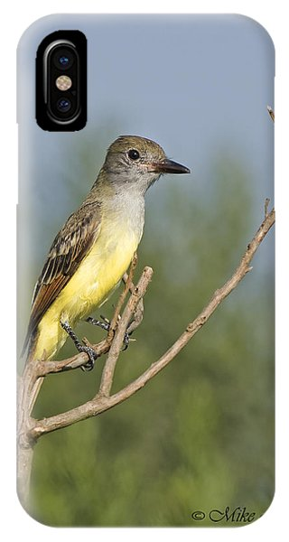 Great Crested Flycatcher IPhone Case