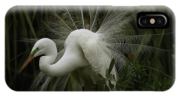 Great White Egret Displaying IPhone Case