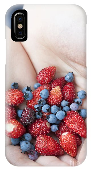 Blue Berry iPhone Case - Hands Holding Berries by Elena Elisseeva