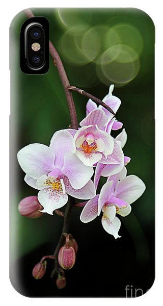 iPhone Case - Hanging by Margie Hurwich