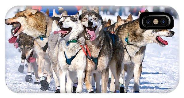 Sled Dog iPhone Case - Happy, Happy, Happy by Ed Boudreau