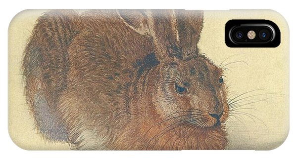 Albrecht Durer iPhone Case - Hare by Albrecht Durer