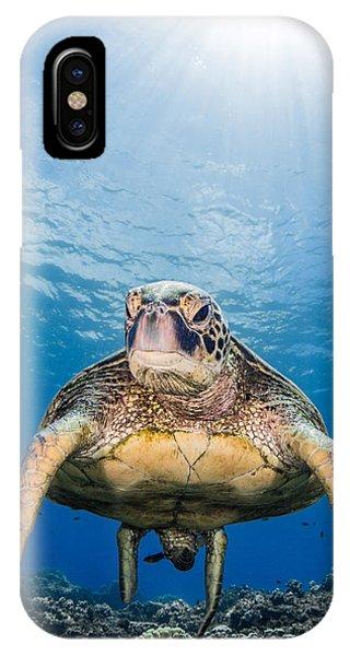 Hawaiian Turtle IPhone Case