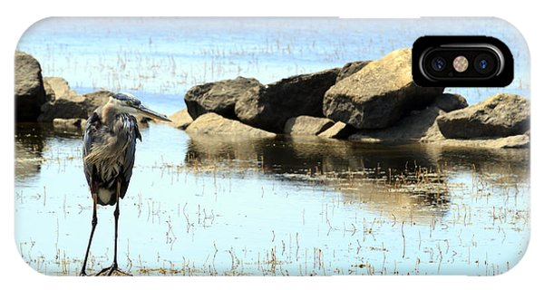 Heron On The Rocks IPhone Case
