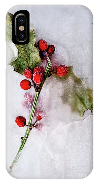 iPhone Case - Holly 5 by Margie Hurwich