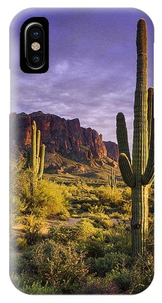 In The Desert Golden Hour  IPhone Case