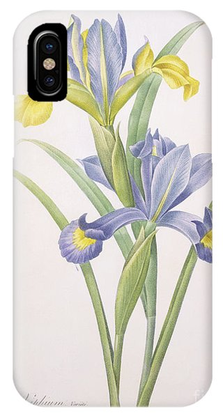 Botanical iPhone Case - Iris Xiphium by Pierre Joseph Redoute