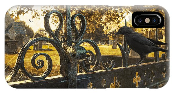 Jackdaw On Church Gates IPhone Case