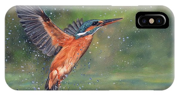 In Flight iPhone Case - Kingfisher by David Stribbling