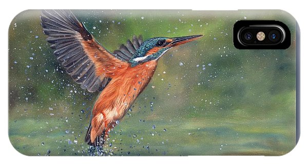 Kingfisher iPhone Case - Kingfisher by David Stribbling
