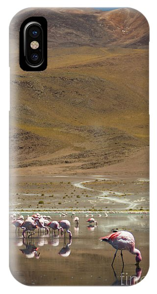 Laguna Colorada, Andes, Bolivia IPhone Case