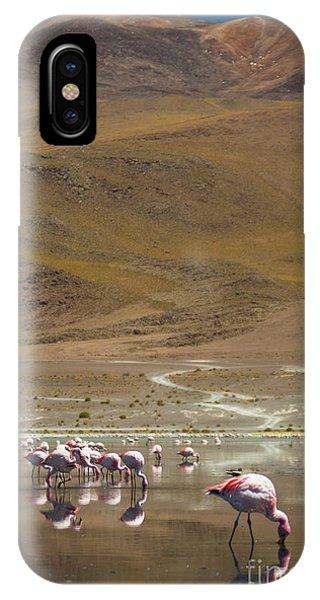 Laguna Colorada, Andes, Bolivia IPhone Case