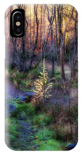 IPhone Case featuring the photograph Last Days Of Autumn by Jeremy Lavender Photography