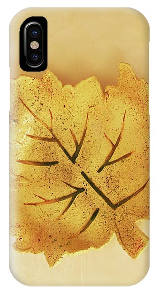 Leaf Plate2 IPhone Case