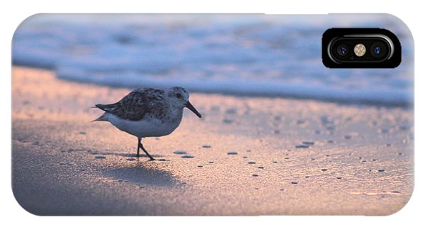 IPhone Case featuring the photograph Least Sandpiper At Dawn by Robert Banach