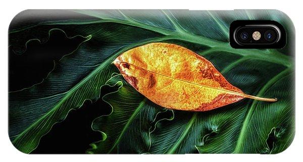 Greenery iPhone Case - Life Cycle Still Life by Tom Mc Nemar