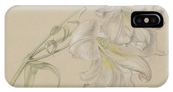Pastel Pencil iPhone Case - Lily by Albert Williams