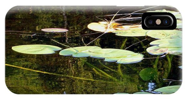 Lily Pads On The Lake IPhone Case