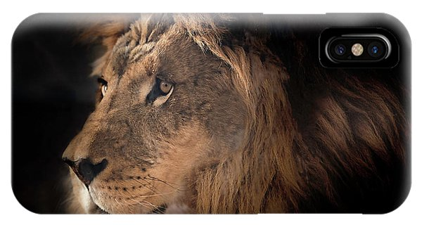 Lion King Of The Jungle IPhone Case