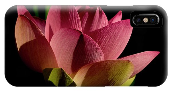 IPhone Case featuring the photograph Lotus Flower 2 by Buddy Scott