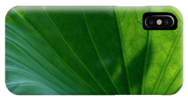 IPhone Case featuring the photograph Lotus Leaf 2017 3 by Buddy Scott
