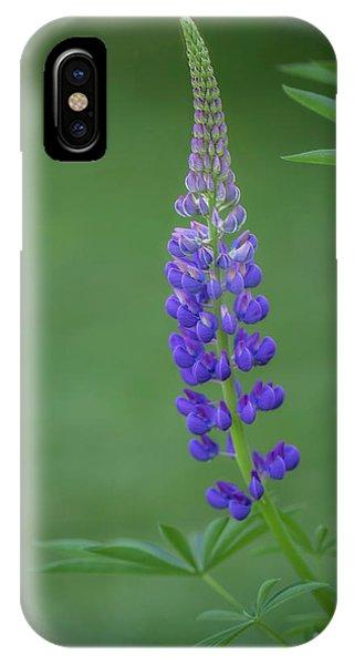 Graceful Lupine IPhone Case