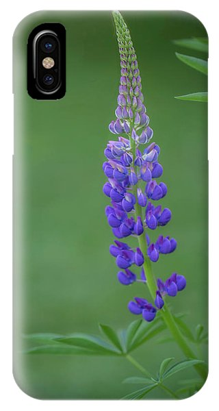 Graceful Lupine IPhone Case