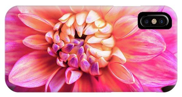 Magenta Dahlia IPhone Case