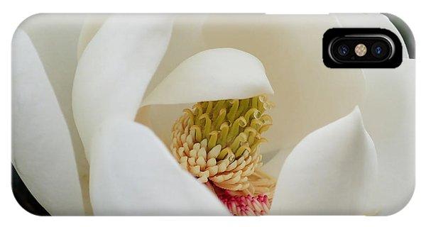 Magnolia Blossom IPhone Case
