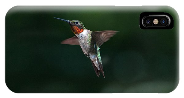 Male Ruby Throated Hummingbird IPhone Case