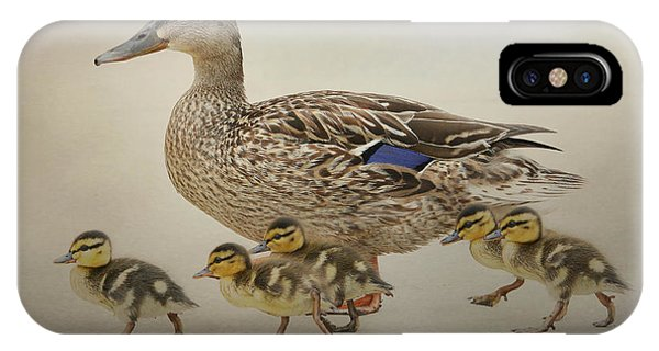March Of The Ducklings IPhone Case
