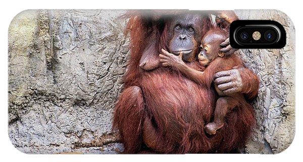 Mom And Baby Orangutan IPhone Case