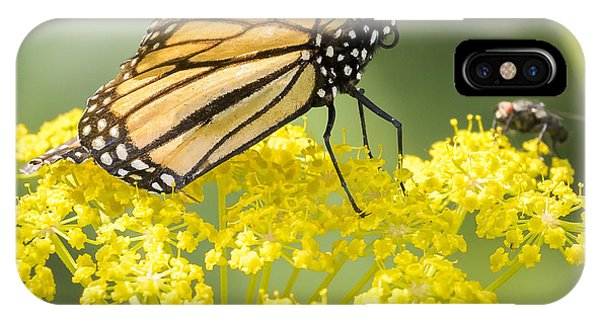Horicon Marsh iPhone Case - Monarch Butterfly by Ricky L Jones