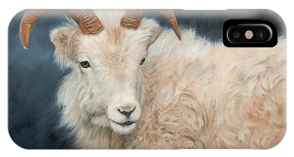 Goat iPhone Case - Mountain Goat by David Stribbling