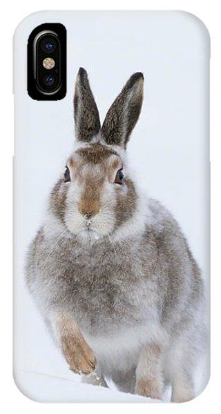 IPhone Case featuring the photograph Mountain Hare - Scotland by Karen Van Der Zijden