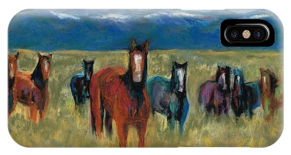 Mustangs In Southern Colorado IPhone Case