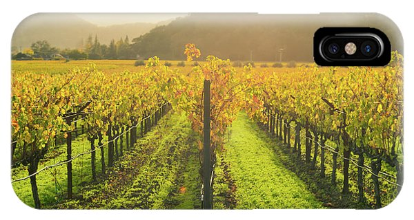 Napa Valley California Vineyard In The Fall IPhone Case