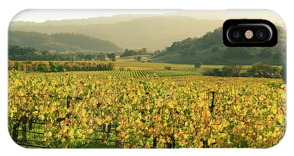 Napa Valley In Autumn IPhone Case