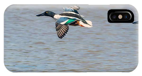 IPhone Case featuring the photograph Northern Shovelers In Flight by Tam Ryan