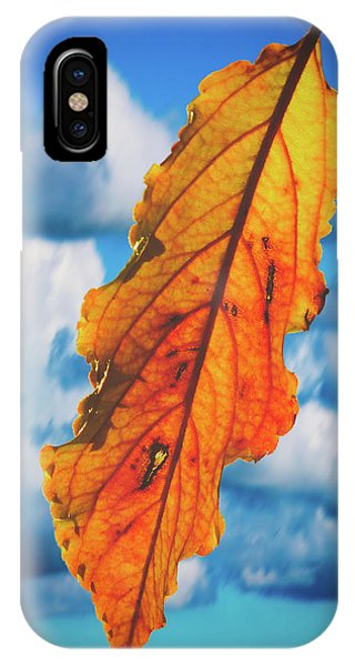 October Leaf B Fine Art IPhone Case
