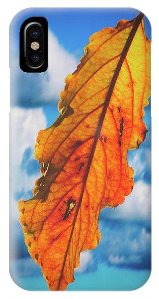 October Leaf B Fine Art IPhone Case