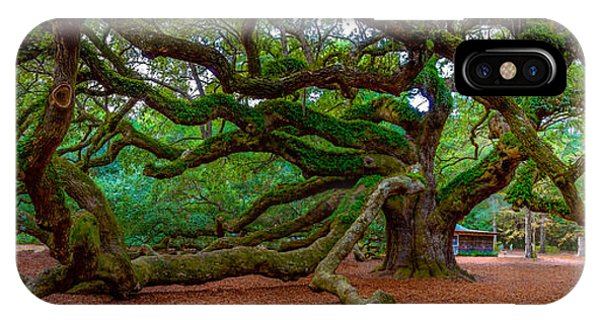 Old Southern Live Oak IPhone Case