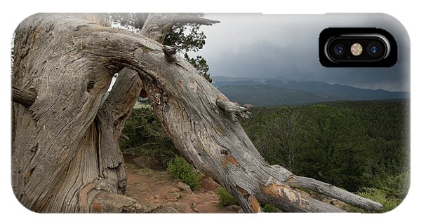 Old Tree On The Mountain IPhone Case