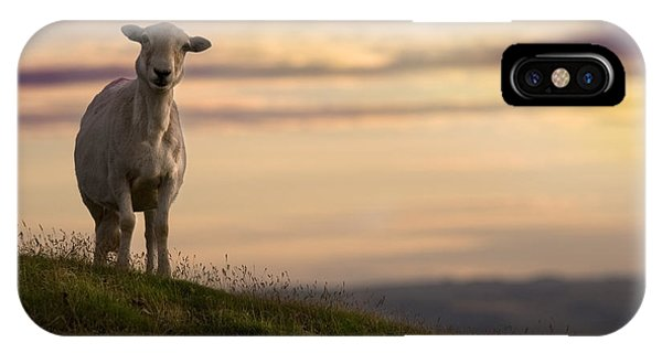 Sheep iPhone Case - On The Top Of The World by Angel Ciesniarska